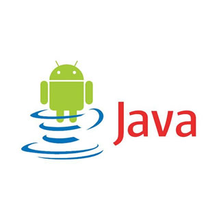 Master Java Standard Edition + Android